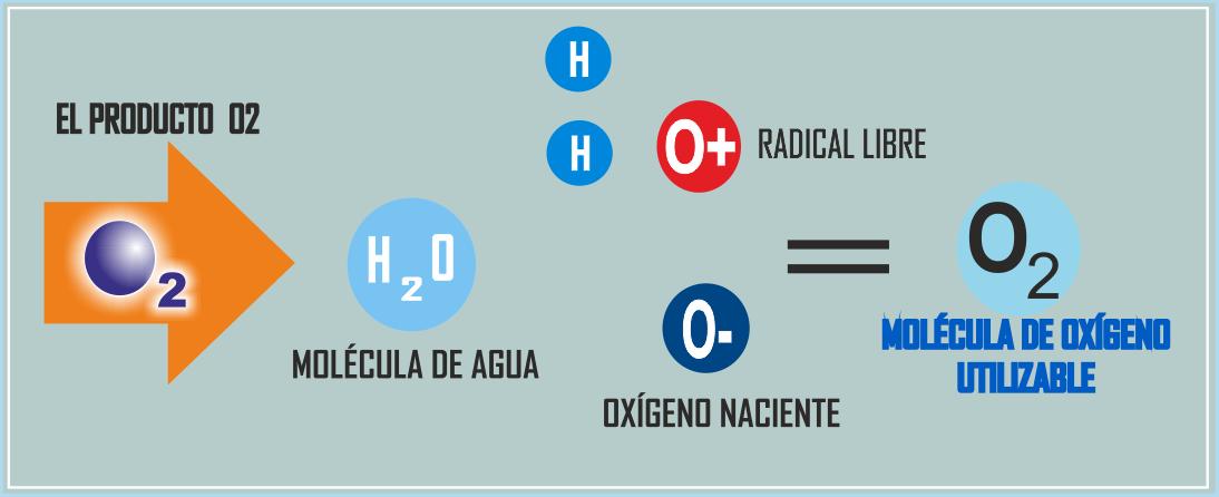 Carlos daniel r os arancibia qu es ox geno l quido o2 for Que significa molecula